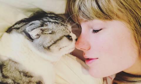 Αυτοί οι διάσημοι αγαπούν τις γάτες και δεν το κρύβουν!