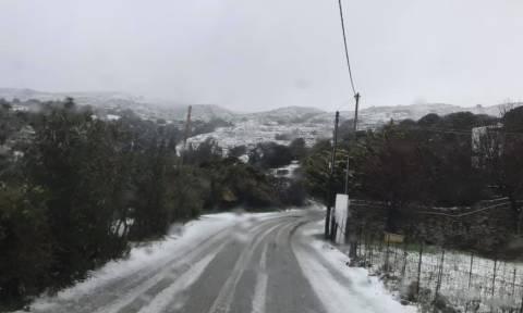 Καιρός: Δείτε την Άνδρο χιονισμένη (pics)