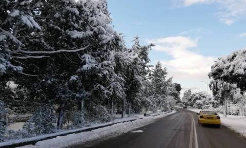 Χιόνια στην Αθήνα: Χάος στους δρόμους - Δεκάδες τροχαία ατυχήματα λόγω ολισθηρότητας