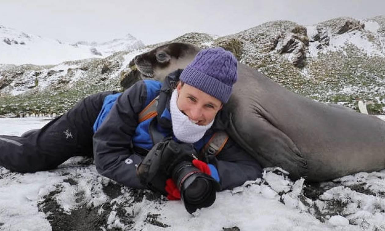 Δεν φαντάζεστε τι έκανε αυτός ο «αγαπησιάρης» θαλάσσιος ελέφαντας στον φωτογράφο (vid)