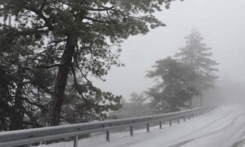 Χιονοκαταιγίδα: Το σπάνιο φαινόμενο που «χτύπησε» το Ηράκλειο (vid)