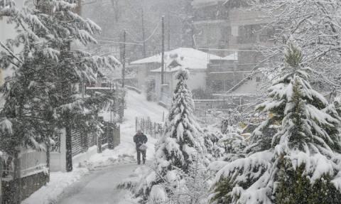 Κακοκαιρία: Σε κατάσταση έκτακτης ανάγκης κηρύχθηκαν περιοχές των Δήμων Κιλκίς και Σερρών
