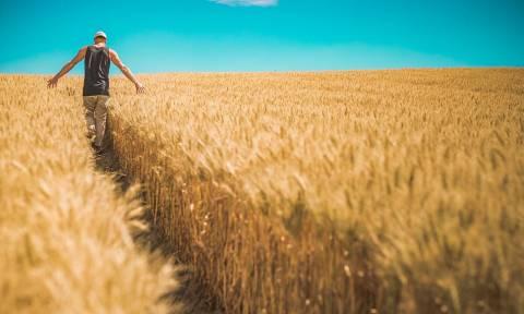 Νέοι αγρότες: Πώς μπορούν να απαλλαγούν από τον ΦΠΑ