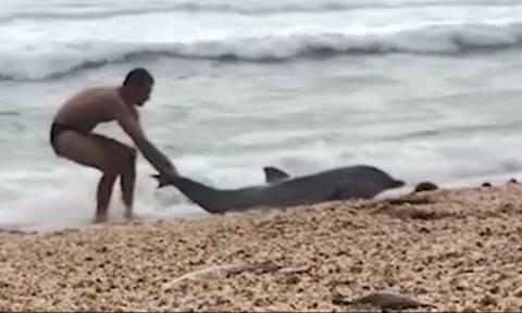 Άνδρας βλέπει στην παραλία ετοιμοθάνατο δελφίνι - Αυτό που κάνει θα ραγίσει την καρδιά σου! (vid)