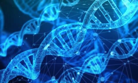 Τεχνητή Νοημοσύνη: Το σχήμα του προσώπου αποκαλύπτει σπάνιες γενετικές διαταραχές (pic)