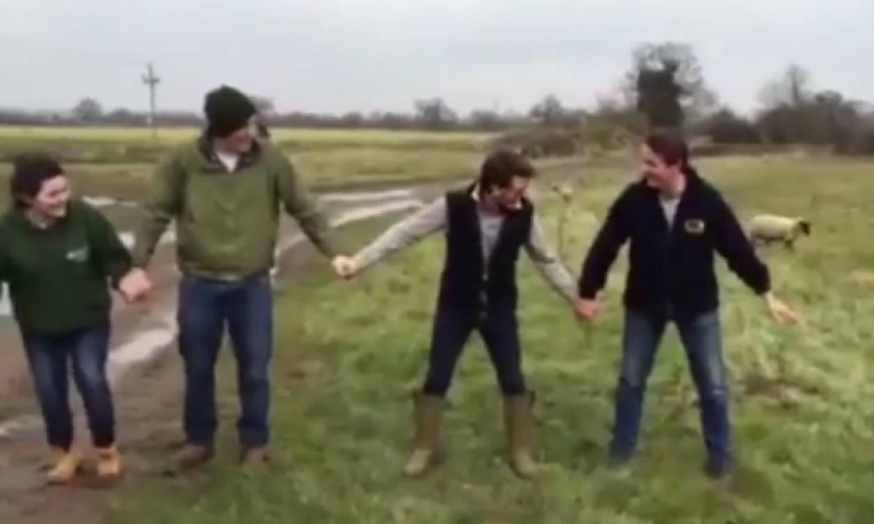 Έκαναν… πείραμα πιάνοντας ηλεκτροφόρο φράχτη – Δείτε τι έπαθαν (video)