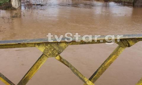 Καιρός: Ανέβηκε επικίνδυνα η στάθμη στον ποταμό Κηφισό Βοιωτίας (pics)