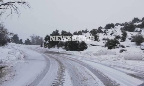 Καιρός ΤΩΡΑ: Πυκνή χιονόπτωση στην Πάρνηθα - Κλειστός ο δρόμος από το τελεφερίκ (pics)