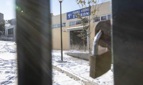 Ποια σχολεία θα είναι κλειστά τη Δευτέρα (14/1) στο νομό Λάρισας