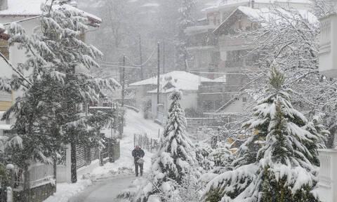 Πυκνές χιονοπτώσεις απ' το απόγευμα και έως την Τετάρτη! Ο καιρός μέχρι το Σάββατο (Video)
