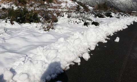 Χιονοπτώσεις και την Τετάρτη... Τι λέει ο Τάσος Αρνιακός (video)