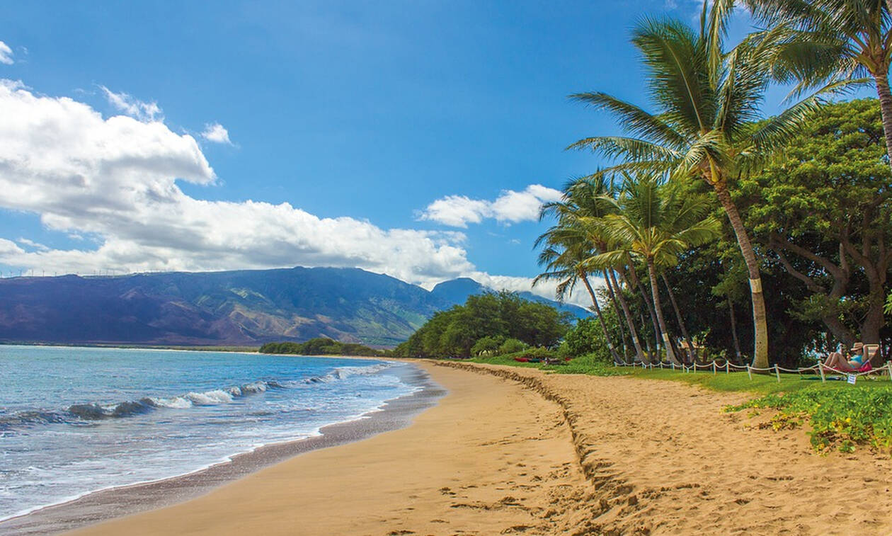 Πήγαν Χαβάη κι έμειναν: Διακοπές πέντε αστέρων για δύο ξεχασμένα... λούτρινα