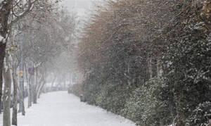 Προσωρινή παύση χιονοπτώσεων! Πώς θα εξελιχθεί ο καιρός μέχρι και τη Δευτέρα... (video)