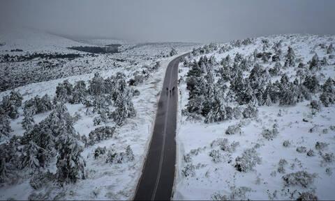 Χειμωνιάτικη εκδρομή στο καταφύγιο Μπάφι της Πάρνηθας: Πώς θα πάτε, τι θα κάνετε (pics)