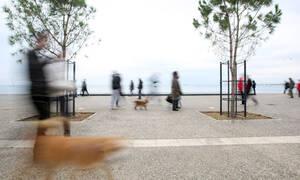 Θεσσαλονίκη: Άγνωστοι έκλεψαν χαλκό βάρους 3,5 τόνων από τη Νέα Παραλία