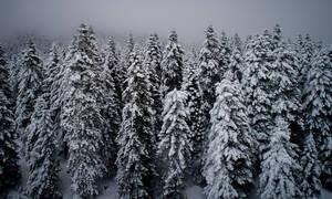 Εντυπωσιακές εικόνες από τους χιονισμένους καταρράκτες της Παλαιοκαρυάς Τρικάλων (vid)