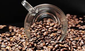 Άσχημα μαντάτα: Το 60% των ειδών του καφέ κινδυνεύουν με εξαφάνιση