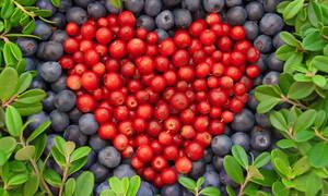 Διατροφή για την καρδιά: Πόσο μειώνει και τον κίνδυνο διαβήτη