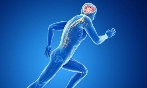 Νοητική έκπτωση: Πόση άσκηση προστατεύει τον εγκέφαλο