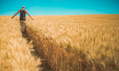 Αυτοί οι αγρότες θα λάβουν οικονομική ενίσχυση 14.000 ευρώ