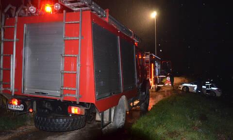 Ναύπλιο: Άγιο είχε οδηγός - Πεύκο έπεσε δίπλα στο Ι.Χ την ώρα που οδηγούσε (vid)