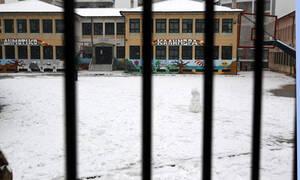 Κακοκαιρία: Χιονοπτώσεις στη δυτική Μακεδονία - Πώς θα λειτουργήσουν τα σχολεία