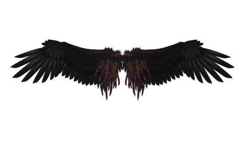 Συγκλονιστική ανακάλυψη: Λύθηκε το μυστήριο του φτερωτού «δαίμονα» Αγχιόρνις (Vid)
