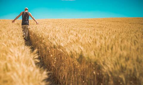 Νέα επιδότηση 14.000 ευρώ σε αγρότες - Οι δικαιούχοι και οι προθεσμίες