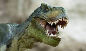 Δείτε το τερατώδες πόδι του «δεινόσαυρου» που έβαλε φωτιά στο ίντερνετ!