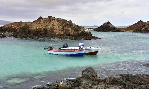 Lobos: Το ευρωπαϊκό νησί που χρειάζεστε γραπτή άδεια για να το επισκεφτείτε - Δείτε γιατί (vid)