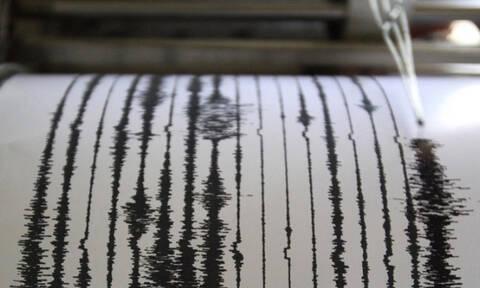 Σεισμός: Τρόμος στην Ιαπωνία - Ξεβράστηκαν στις ακτές ψάρια 3,5 μέτρων (pics)