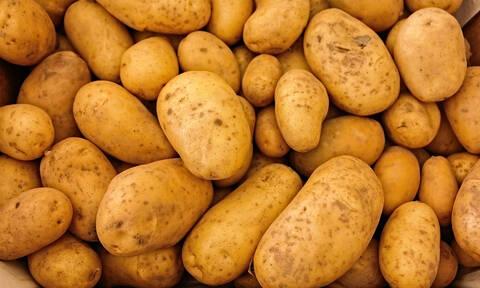 Δεν φαντάζεστε τι βρήκαν μέσα σε φορτίο με πατάτες!