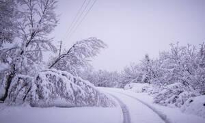 Καιρός: Ερχεται κακοκαιρία εβδομαδιαία με καταιγίδες και πυκνές χιονοπτώσεις...