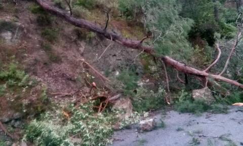 Κακοκαιρία: Ξηλώθηκαν δρόμοι και πινακίδες στη Ρόδο από τους θυελλώδεις ανέμους (pics)