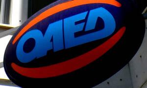 ΟΑΕΔ: Προσλήψεις 500 ατόμων για 2 χρόνια - Ξεκίνησαν οι αιτήσεις
