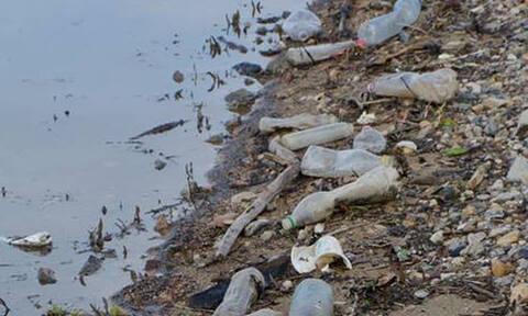 «Πνίγεται» στα σκουπίδια η λίμνη Κερκίνη (pics)