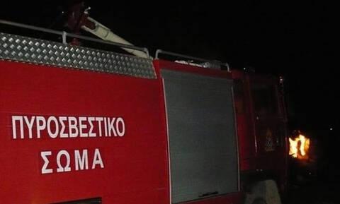 Φωτιά σε τροχόσπιτο στη Χαλκιδική (pics)