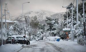 Καιρός: Αντίστροφη μέτρηση για το σφοδρό κύμα ψύχους - Χιόνια την Τετάρτη και στην Αθήνα
