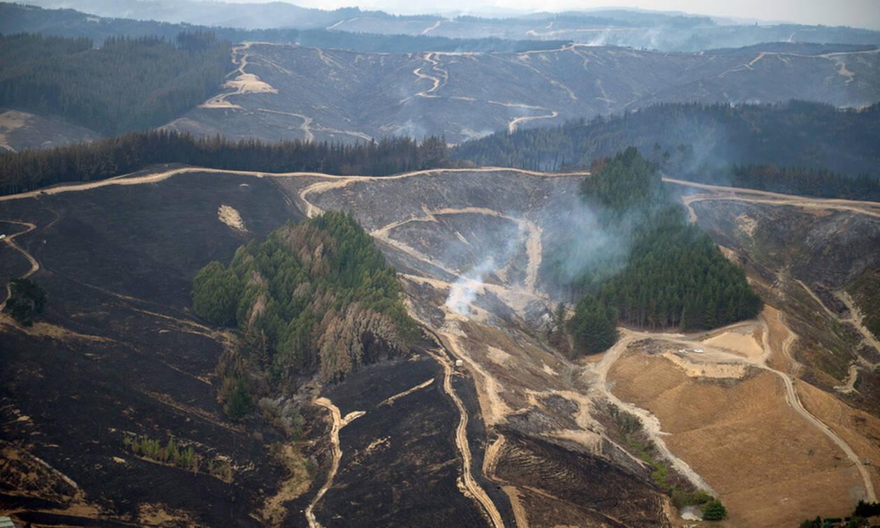 Καίγεται η Νέα Ζηλανδία: Η χειρότερη πυρκαγιά των τελευταίων 50 χρόνων (vid)