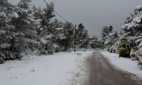 Καιρός: Έκτακτο δελτίο ΕΜΥ - Πότε θα χιονίσει στην Αθήνα