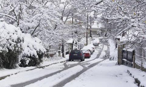 Καιρός: «Δυστυχώς...» Η κατηγορηματική αντίδραση του Τάσου Αρνιακού για τις χιονοπτώσεις (video)
