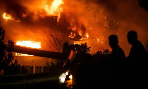 ΕΛΓΑ: Μέχρι 14/03 οι αιτήσεις όσων επλήγησαν από τις πυρκαγιές το 2017