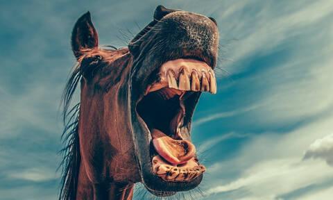 Ανασχηματισμός: Θα σκάσουμε στα γέλια