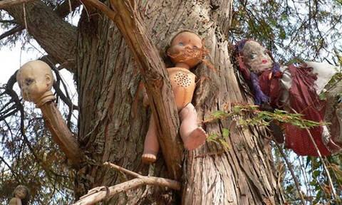 Το ανατριχιαστικό νησί με τις κρεμασμένες κούκλες (photos+video)