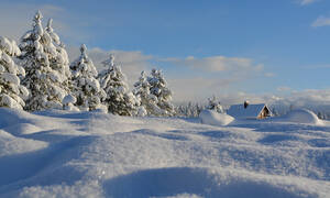 Τρόμος από το «μαύρο χιόνι»: Δείτε σε ποια περιοχή «έπεσε» (pics)
