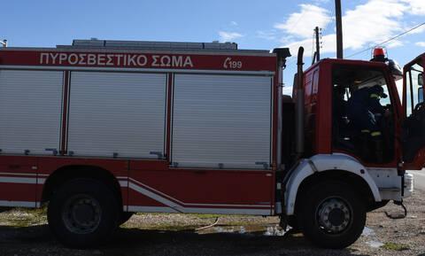 Ζάκυνθος: Πυρκαγιά σε δασική έκταση στο Κερί