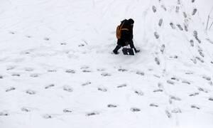 Καιρός: Η «Ωκεανίς» απειλεί την Ελλάδα με χιόνια και θερμοκρασίες Σιβηρίας - Πότε θα «χτυπήσει»