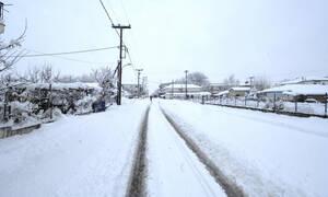Καιρός - Ωκεανίς: Ξεκινάει η επέλαση της ισχυρής κακοκαιρίας - Ποιες περιοχές θα «θαφτούν» στο χιόνι