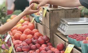 Αυξάνεται η κρατική επιχορήγηση στους γεωργούς - Δείτε από πότε