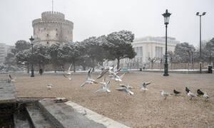 Κακοκαιρία: Η «Ωκεανίδα» πάγωσε τη Βόρεια Ελλάδα - Κλειστοί δρόμοι και προβλήματα